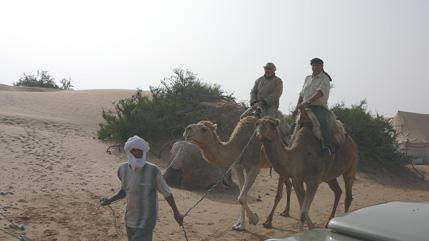 Andrés e Hilari montados en camello