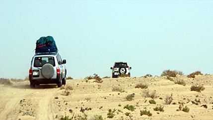 Fent camí pel desert
